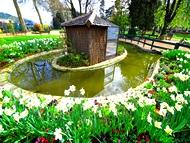 jardins villes et villages fleuris en is re grenoble alpes voiron chartreuse vercors. Black Bedroom Furniture Sets. Home Design Ideas