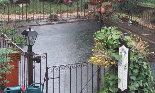 Vacances st jean et en is re gite jardin rhone alpes is re grenoble voiron moirans fleurs - Bassin jardin japonais grenoble ...